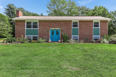 Knoxville Single Family Home For Sale: 300 Kimberlin Heights Rd