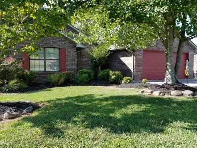 Knoxville Single Family Home For Sale: 909 Josepi Drive