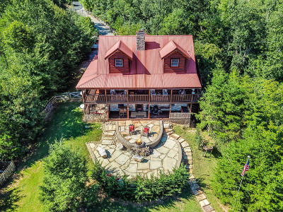 Gatlinburg Single Family Home For Sale: 536 Pinnacle Vista Rd