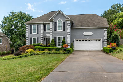 Knoxville Single Family Home For Sale: 1208 Osprey Lane