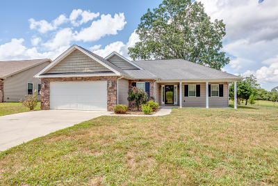 Sevier County Single Family Home For Sale: 2211 Murphys Chapel Drive