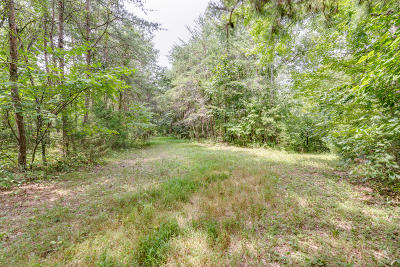 Residential Lots & Land For Sale: Rays Gap Rd