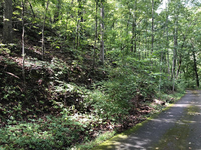 Sevierville Residential Lots & Land For Sale: Estates Dr & Sourwood Way