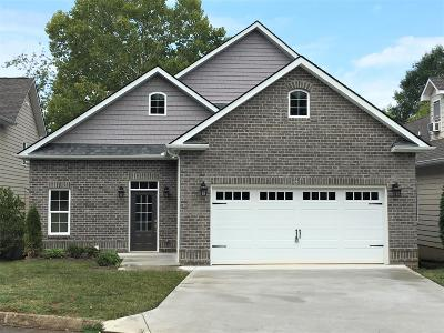 Knoxville Single Family Home For Sale: 949 Gothic Manor Way