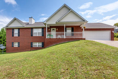 Sevierville Single Family Home For Sale: 1845 Big Buck Lane