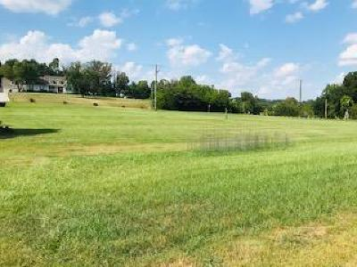 Blount County Residential Lots & Land For Sale: Morganton Rd