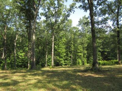 Residential Lots & Land For Sale: 20.23ac Bearpen Rd
