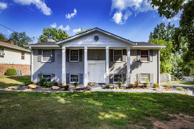 Knoxville Single Family Home For Sale: 10920 Dineen Drive