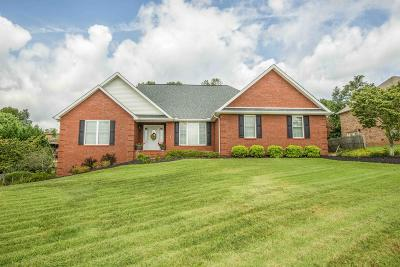Knoxville Single Family Home For Sale: 7819 Scenic View Drive