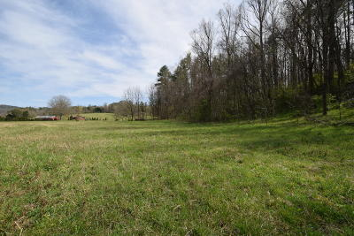 Blount County Residential Lots & Land For Sale: E Lamar Alexander Pkwy