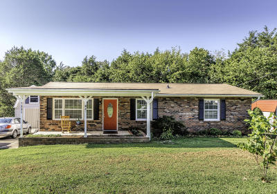 Knoxville Single Family Home For Sale: 7331 Bonny Kate Drive