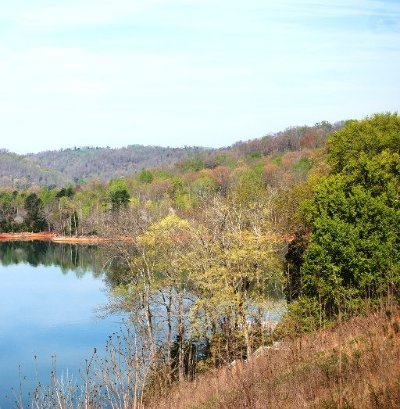 Campbell County, Anderson County, Union County, Claiborne County, Grainger County Residential Lots & Land For Sale: W Deerwalk