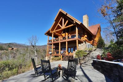 Gatlinburg Single Family Home For Sale: 808 Pinnacle Vista Rd