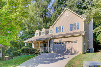 Knoxville Single Family Home For Sale: 904 Coxboro Court