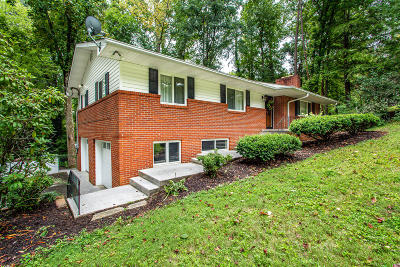 Fountain City Single Family Home For Sale: 1720 Doningham Drive