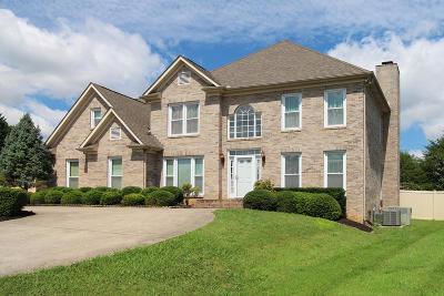 Knoxville Single Family Home For Sale: 941 Garrison Ridge Blvd