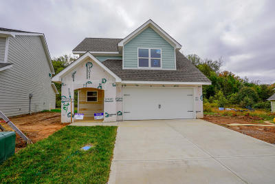 Knoxville Single Family Home For Sale: 7721 Train Station Way