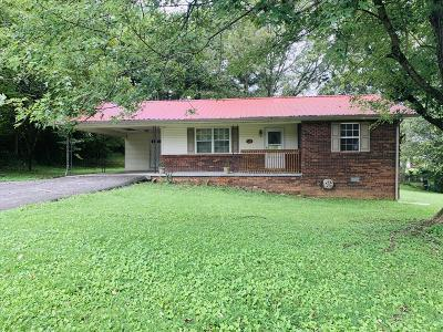 Tazewell Single Family Home For Sale: 133 Jaynes Rd
