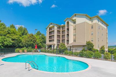 Pigeon Forge Condo/Townhouse For Sale: 215 Mayes Rd #Apt 143