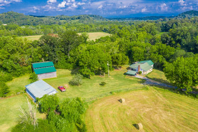 Knoxville Single Family Home For Sale: 7900 Seven Islands Rd