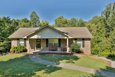 Knoxville Single Family Home For Sale: 617 Liverpool Lane