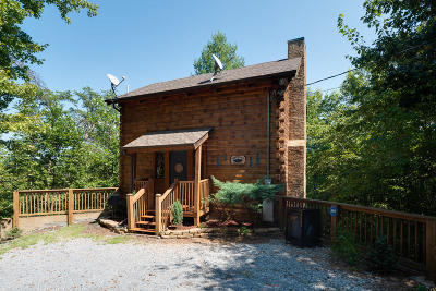 Sevierville Single Family Home For Sale: 4186 Evans Chapel Rd