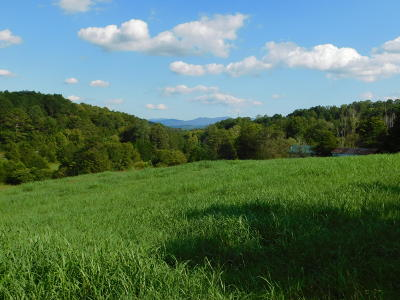 Monroe County Single Family Home For Sale: 107 Sinking Creek Rd