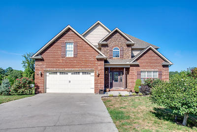 Knoxville Single Family Home For Sale: 8320 Rockstone Lane