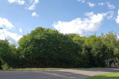 Maryville Residential Lots & Land For Sale: 611 Home Ave