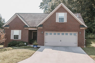 Knoxville Single Family Home For Sale: 8524 Reagan Woods Lane