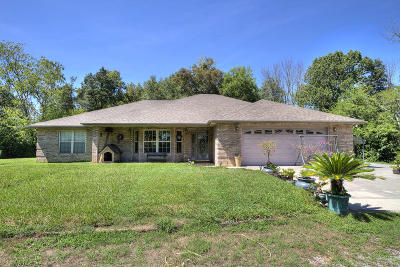 Sevierville Single Family Home For Sale: 521 Cedar Top Drive