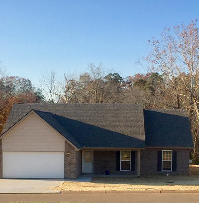 Maryville Single Family Home For Sale: 1517 Griffitts Blvd