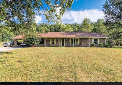 Luttrell Single Family Home For Sale: 282 Little Tater Valley Rd