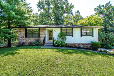 Knoxville Single Family Home For Sale: 4620 NE Mockingbird Drive