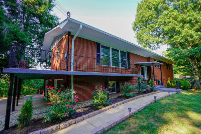 Knoxville Single Family Home For Sale: 520 Locust Hill Lane