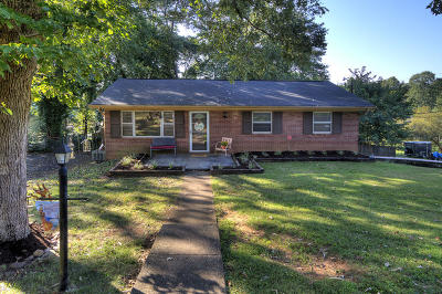 Knoxville Single Family Home For Sale: 1720 S Forest Drive