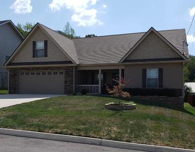 Knoxville Single Family Home For Sale: 3203 Jessie Cove Lane