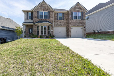 Knoxville Single Family Home For Sale: 1814 Glen Shady Blvd
