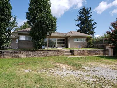 Lenoir City Single Family Home For Sale: 4723 Kingston Hwy