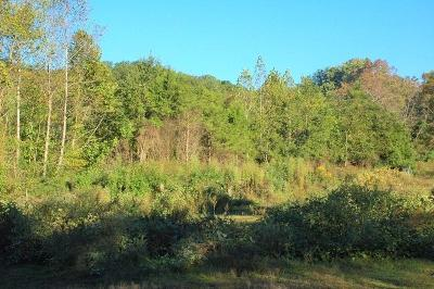 Knoxville Residential Lots & Land For Sale: 0 Mary Emily Lane