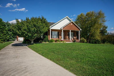 Maryville Single Family Home For Sale: 106 Choto Court