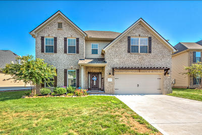 Knoxville Single Family Home For Sale: 12330 Chirping Bird Lane