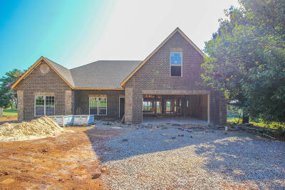 Maryville Single Family Home For Sale: 3048 Champions Drive
