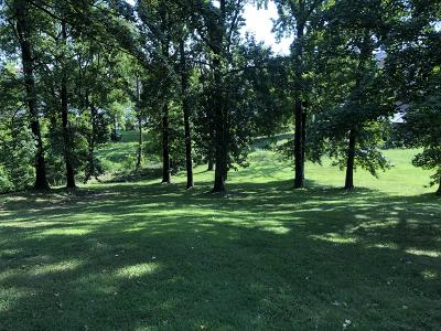 Maryville Residential Lots & Land For Sale: Cates St