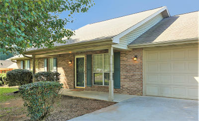 Maryville Single Family Home For Sale: 311 Headrickview Drive