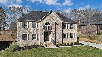 Knoxville Single Family Home For Sale: 10019 Castleglen Lane