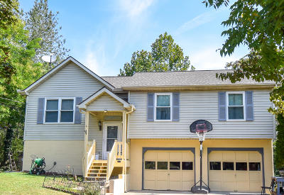 Knoxville Single Family Home For Sale: 5920 Mondale Rd