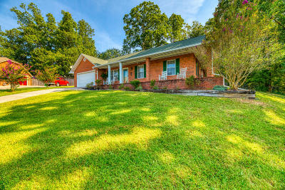 Knoxville Single Family Home For Sale: 5030 Omega Terrace Lane