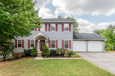 Knoxville Single Family Home For Sale: 801 View Harbour Rd