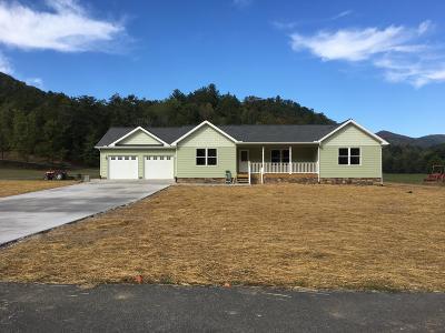 Cocke County Single Family Home For Sale: 638 Kaylee Lane